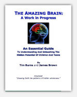 The Amazing Brain – Digital Download